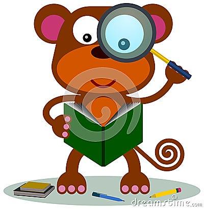 Monkey research