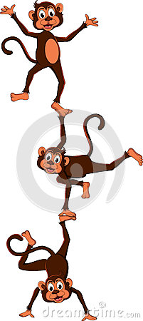 Monkey s cartoon attraction