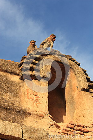 Monkey Temple (Hanuman) in Hampi, India.