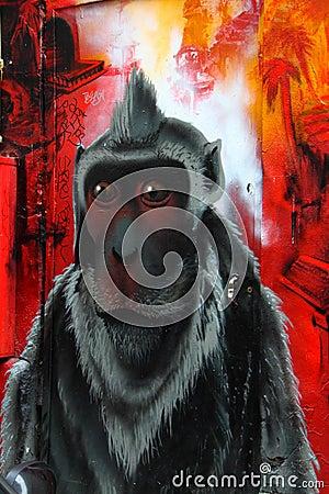 Monkey wall graffiti