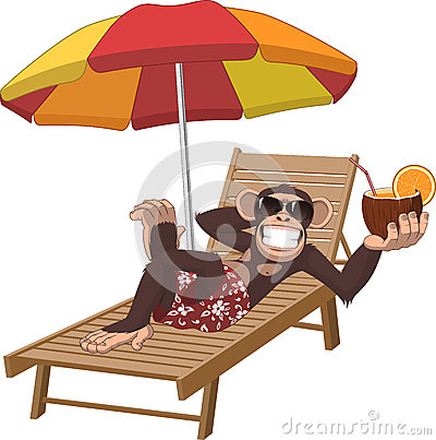 Free Monkey With A Cocktail Stock Images - 54430824