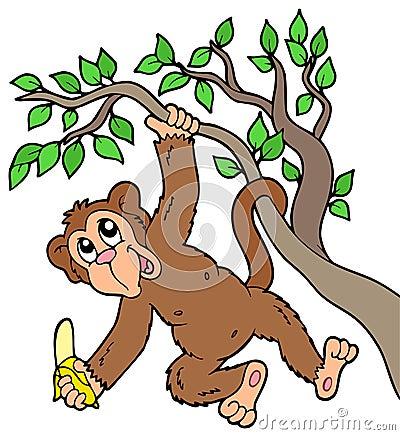 Free Monkey With Banana On Tree Stock Photo - 14450370