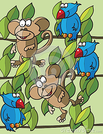 Monkeys and birds