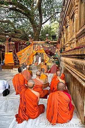 Monks praying under the bodhy-tree, Bodhgaya, Indi Editorial Stock Photo