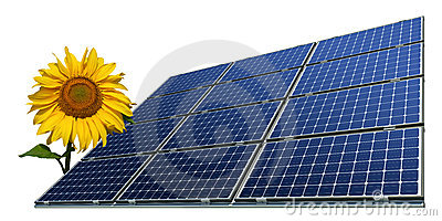 Mono-crystalline solar panels and sunflower