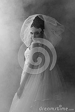 Free Monochrome Portrait Of Fantasy Bride Stock Photos - 38717993