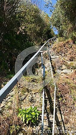 Monorail for small train - grape harvest, Cinque Terre, Italy