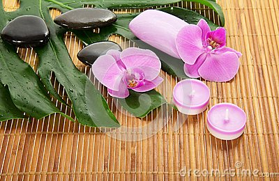 Monstera leaf, orchid and aromatic set