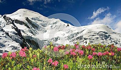 Mont Blanc-France