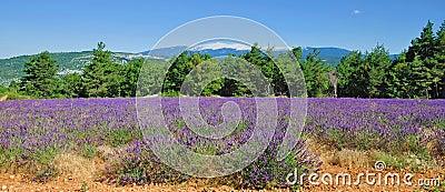 Mont Ventoux,Provence,France