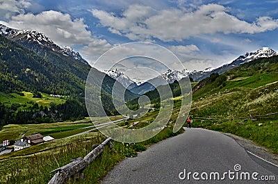Montaña-vista suiza al camino en Ardez