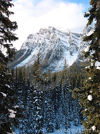 Montagna maestosa con una foresta nevosa 2
