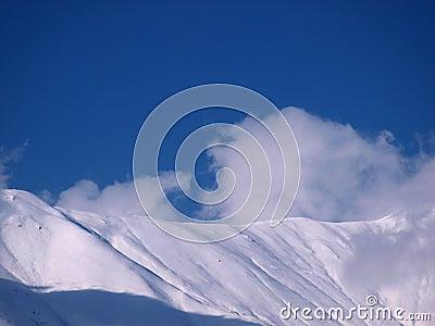 Montagne dello Snowy un giorno pieno di sole