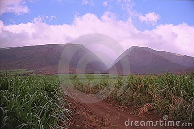 Montagnes occidentales de Maui