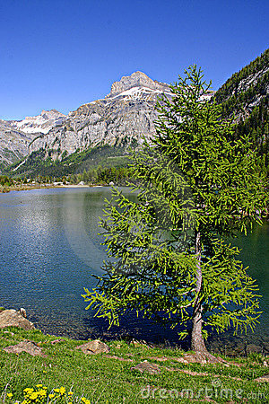 Free Montain Lake Royalty Free Stock Images - 201139