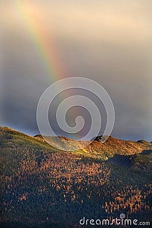 Montana Gold Rainbow Hills Fall