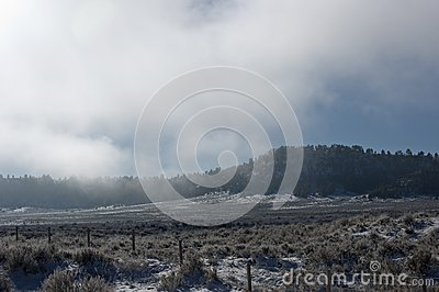 Montanha e campo nevoentos
