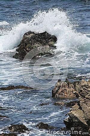 Monterey Ocean Wave