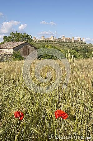 Monteriggioni countryside, Tuscany Italy
