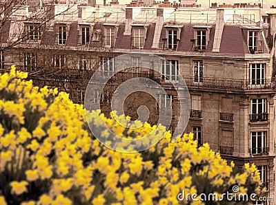 Montmartre paris france