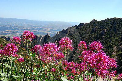 Montserrat mountain.