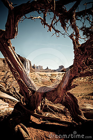 Free Monument Valley Arizona Royalty Free Stock Images - 24548349