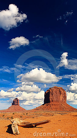 Free Monument Valley Navajo Tribal Park In Utah Stock Photography - 7545712