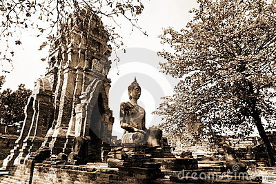 Monuments of buddah, ruins of Ayutthaya