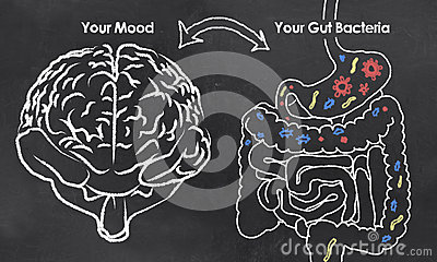Mood and Gut Bacteria Stock Photo
