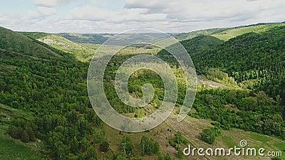 Mooie heuvelige vallei met veel bomen Het wordt overvloedig verlicht door de zon stock video