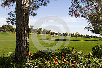Mooie nieuwe moderne fairway van de golfcursus in Arizona