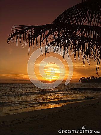 Mooie tropische zonsondergang