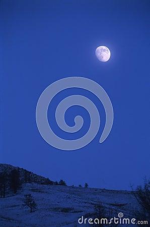 Free Moon Stock Image - 11078061