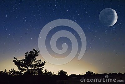 Moon above a night steppe