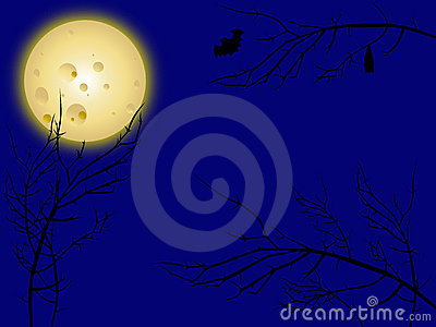 Moon and creepy tree branches