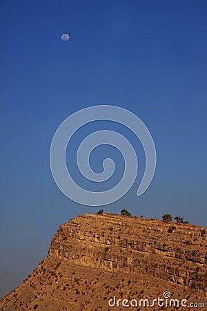 Moon in the desert