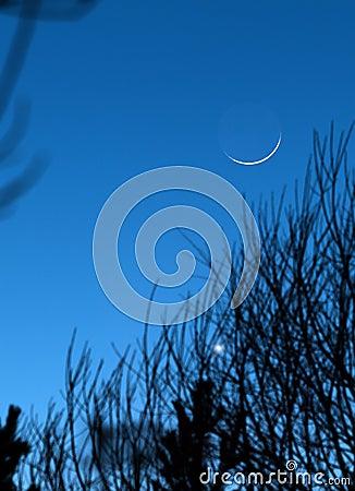 Moon earthshine