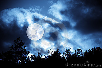 Moon over trees