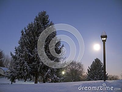 Moon Rise at Dawn