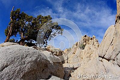Moon Rocks Nevada