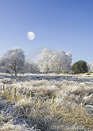Moon and wintry countryside