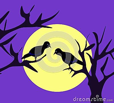 Moonlight Birds
