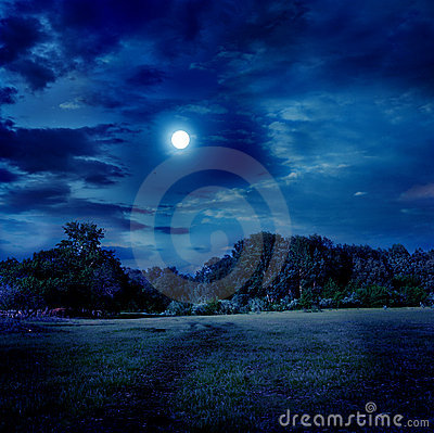 Free Moonlight Landscape Royalty Free Stock Photos - 16740698