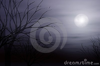 Moonlight Mist and Tree Background