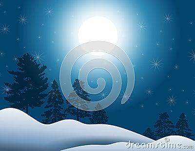 Moonlight in Winter