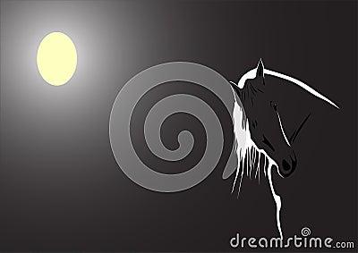 Moonlit horse on black