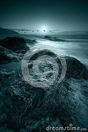 Free Moonlit Ocean Royalty Free Stock Photos - 6487798