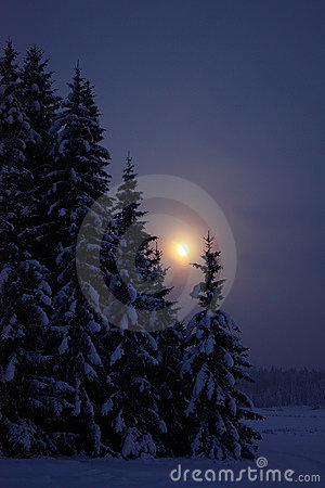 Moonrise at winter evening countryside