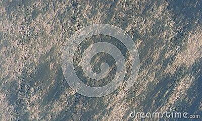 Moonscape orbit