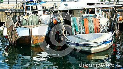 Moored fishing trawlers